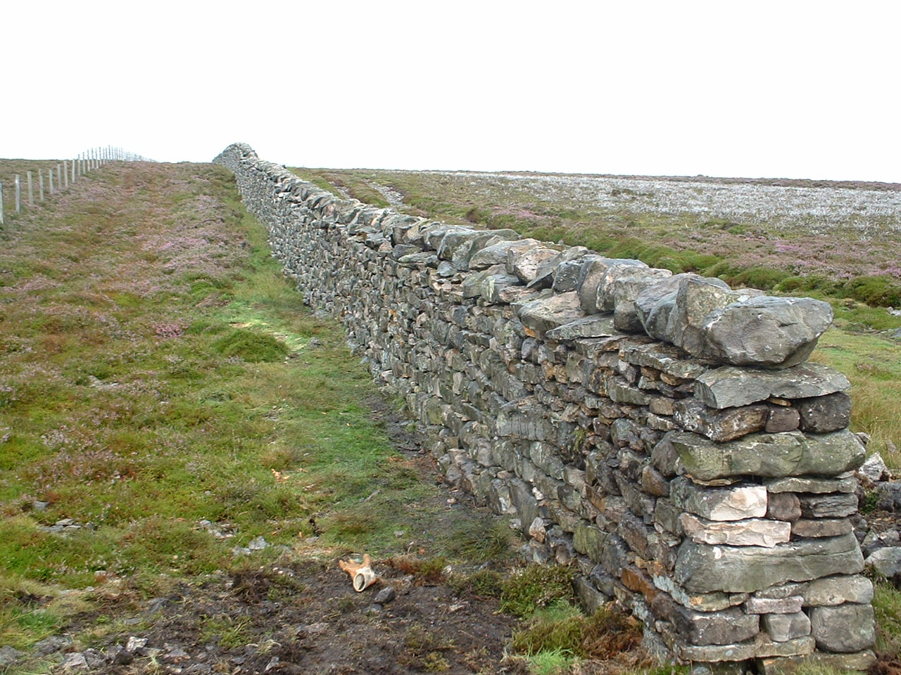 Stone Wall Construction : Dry stone wall seminar in donegal med partnership group