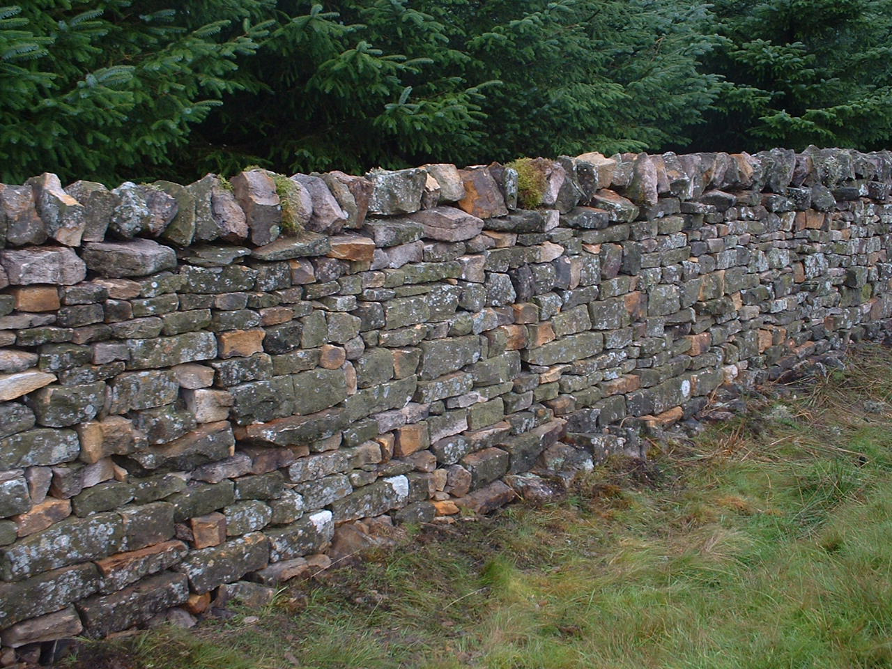 Stone Veneer Wall : Dry stone wall seminar in donegal med partnership group