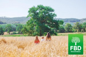 FBD's new ad to attract customers includes an oak tree.