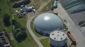 Northern Ireland's Anaerobic Digestion (AD) sector is set to rocket within the next half decade.