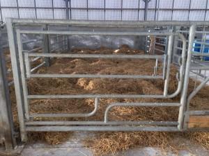calving-gate-1024x768