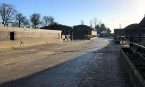 Clean farmyard