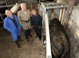 Minister Michelle McIlveen reiterated her commitment to eradicating TB during a farm visit where she observed.