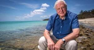 British wildlife documentary maker David Attenborough