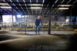 Philip Higgins pictured on his farm in Skreen, Co Sligo. Photo Brian Farrell