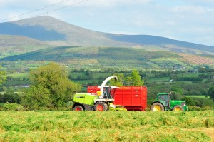 Land leasing rates have reached €350 an acre this spring with the demand underpinned by dairy farmers looking for grazing and fodder