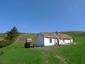New Thatch Repair Grant Scheme Announced
