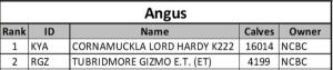 Angus Info