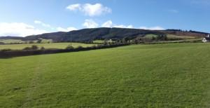 green-fields-winter-2-730x375 (1)