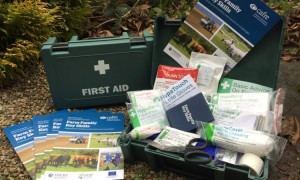 first-aid-kit-photo-full-size-750x450