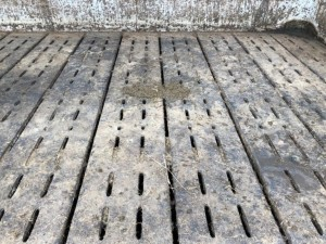 Rubber mats on the slatted floor
