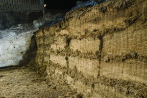 Silage-clamp-op2-768x514