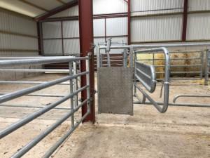 3-in-1 calving gate