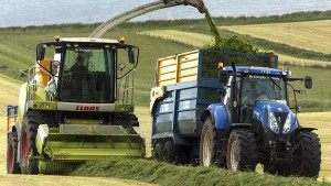 260620_grass-for-silage-295326217_c-mrallen-Stock_Adobe-com (1)
