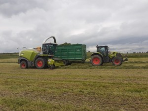 Ryan-Ronayne Agri's Claas harvester in action in Dungourney